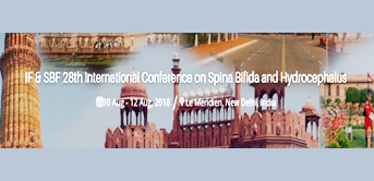 IF & SBF 28th International Conference